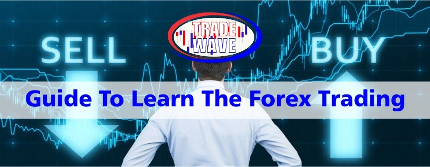 Guide to Learn the Forex Trading